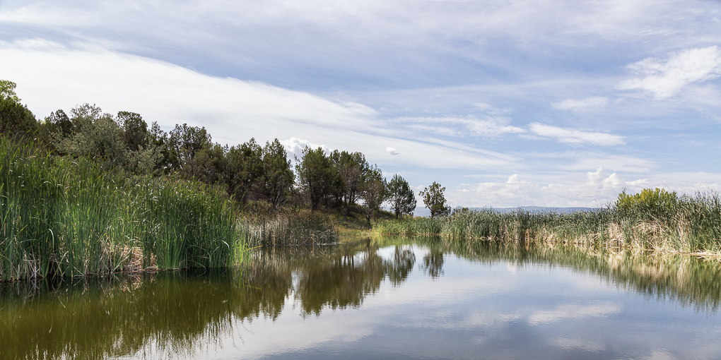 Madden Pond 2